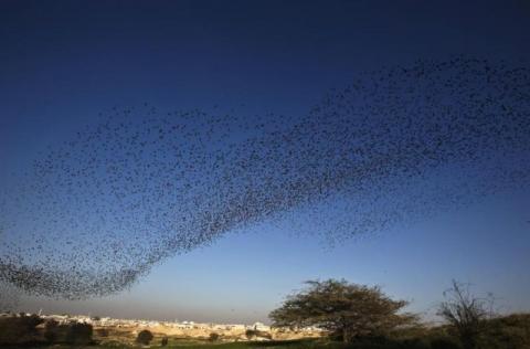 Suara Terompet Misterius Terdengar dari Langit Berbagai Negara