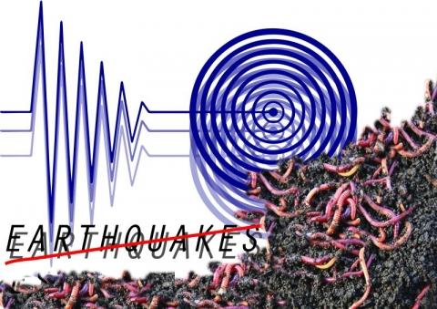 UGM Pastikan Fenomena Cacing Tak Terkait Gempa