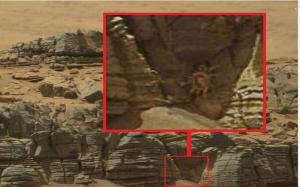 Monster Kepiting Ditemukan di Mars?