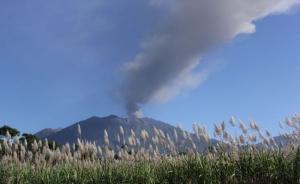 Gempa Tremor Gunung Raung Terus Meningkat