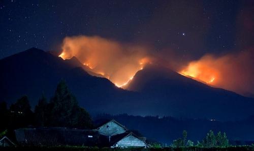Puluhan Hektar Hutan Gunung Lotu Terbakar