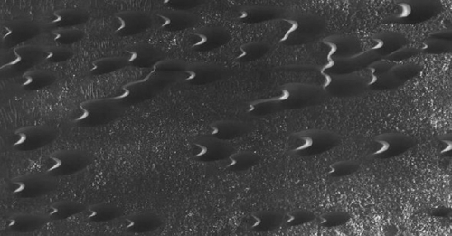 Foto NASA Ini Tunjukkan Kehadiran Cacing di Mars ?