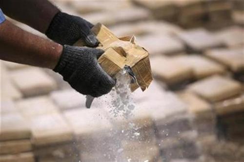 Buset! Kepolisian Kolombia Sita Kokain 7 Ton dari Kebun Pisang