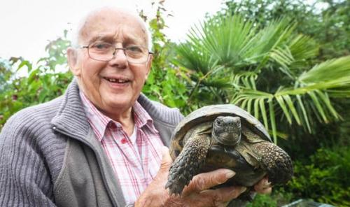 Kura-kura Berusia 100 Tahun Ini Bertamasya Sejauh 1 Mil Setelah Minggat Selama 1 Minggu